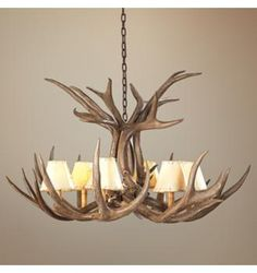 Lamps Plus shed antler chandelier II Antler Lights, Antler Chandelier, Rustic Chandelier, Shed Antlers, Deer Horns, Mule Deer, My Dream Home, Rustic Decor, Light Fixtures
