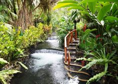 Tabacon Resort - Arenal Costa Rica Hotel