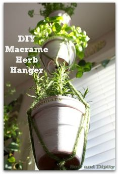 Easy DIY 3 Tiered Macrame Plant hanger, perfect for herbs in the kitchen #MPinterestParty
