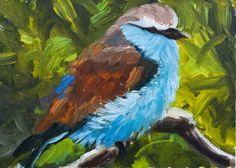 KMD2563 Oh So Brilliant bird, wildlife,, painting by artist Kit Hevron Mahoney