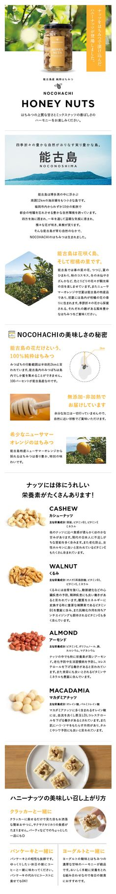 NOCOHACHI|HONEY NUTS ランディングページ|kacika制作実績 Honey, Design