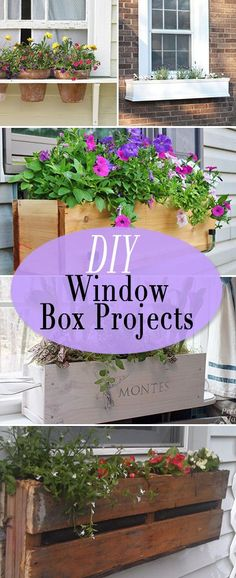 DIY Window Box Proje