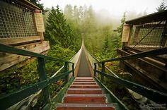 Capilano Suspension Bridge, Vancouver BC 2010