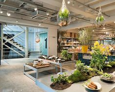 Grocery Store Lighting Fixtures Design Ideas In Natural Interior