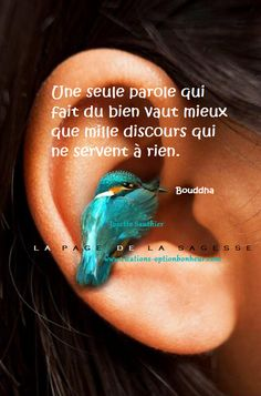 La Page de la Sagesse : Citation de Bouddha sur les belles paroles.
