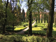 A view of the Giardino Giusti in Verona, Italy from our recent trip.