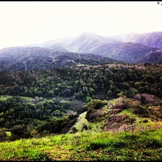 I will go hiking again. Go Hiking, Ankle, Mountains, Nature, Travel, Viajes, Traveling, Nature Illustration, Off Grid