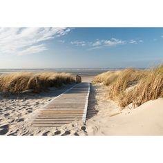 North Sea Beach on Langeoog. Path to the beach on Langeoog through the dunes wit , Arte Lds, Beach Wall Murals, Wall Art, Framed Wall, Poster Mural, Beach Boardwalk, Baltic Sea, North Sea, Print Pictures