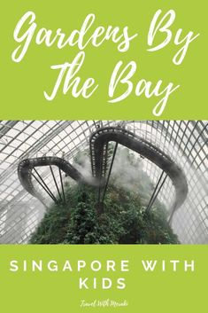 Find out about the best Gardens By The Bay attractions and why Gardens By The Bay With Kids is one of the best family vacations. Singapore Attractions, Singapore Itinerary, Singapore Travel, Best Family Vacations, Family Vacation Destinations, Family Travel, Vacation Ideas, Travel Destinations, Travel Tips