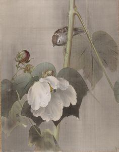 ArtistOkada Baison (Japanese,)  Title/Object NameFlowers and Birds