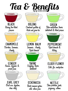 The health benefits of green tea are many and amazing. Read about green tea nutrition and how this little fun green drink can make your life better! Natural Health Remedies, Home Remedies, Herbal Remedies, Cold Remedies Fast, Healthy Drinks, Healthy Tips, Healthy Juice Recipes, Healthy Eating Habits, Healthy Detox