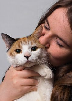 How To Plan Care For Your Cat In The Case Of An Unexpected Absence