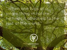 Connect to the rest of the world through nature.