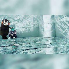 #防弾少年団 日本6thシングルRUN-Japanese Ver.-MV公開 #Kumamon Always Be Your Side 熊本熊永遠在你身邊陪伴你 tember_90 一個MV隱藏著好多意義 #SUGA #슈가 #방탄소년단 #화양연화 by ______yeechingv______
