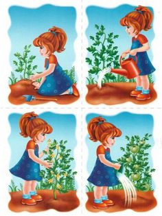 1 million+ Stunning Free Images to Use Anywhere Sequencing Pictures, Sequencing Cards, Story Sequencing, Sequencing Activities, Preschool Education, Preschool Learning Activities, Preschool Themes, Spring Activities, Picture Story Writing