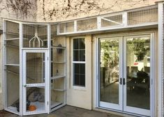 Cat Mansion, Outdoor Cat Enclosure, Living With Cats, Cat Run, Cat Towers, Cat Playground, Outdoor Cats, Feral Cats, Pet Furniture