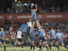Pierre Spies von den Bulls wird von seinen Teamkollegen im südafrikanischen Rugby-Union-Match gegen die Warathas hochgehoben, um das Objekt der Begierde vorm Gegner zu erwischen. (Foto: Kim Ludbrook/dpa)