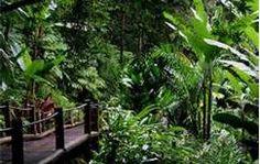 photos of hawaiian gardens - Bing Images