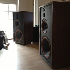 Cerwin Vega NE10. 18 inch woofer, 12 inch lower-mid, upper mid horn and horn tweeter. Instant divorce size :) ..... what a brute. Uber Cool vintage speakers from a time when men where men ;)