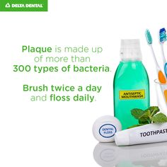 Dental plaque is made up of more than 300 types of bacteria. Brush twice a day and floss daily to reduce plaque. Dental Floss, Healthy Teeth, Mouthwash, Make Up, Bottle, Day, G Strings, Maquillaje, Flask