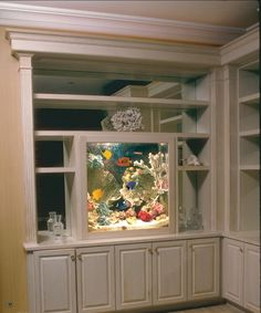 SALTWATER AQUARIUMS More