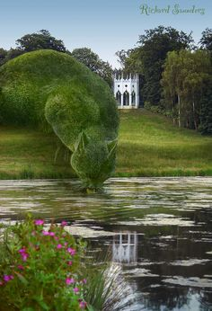 I know it is not real, but it fits in my garden :-)