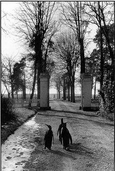 Black & White (firsttimeuser: Le repos du Cirque Pinder, 1956...)