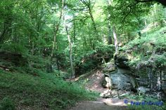 Mullerthal Trail, Berdorf, Luxembourg