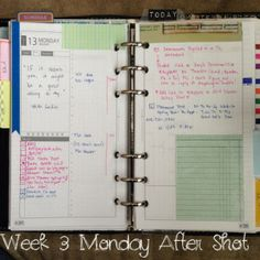 Week 3 Monday After Shot #filofax #franklincovey #daytimer #diyfish #lifemapping