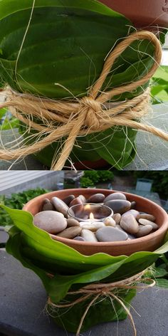 Create a beautiful votive candle holder  centerpiece right from your backyard.../