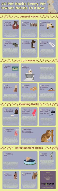 20 Pet Hacks Every Pet Owner Needs To Know