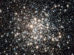 NASA - Field of Stars
