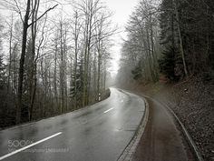 Long way home by apicolone
