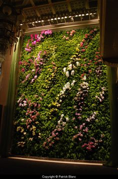 Vertical garden for Butterfly Dance, Taipei by Patrick Blanc