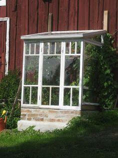 Vihervitriini vanhoista ikkunoista
