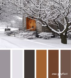 Winter Color Palettes Inspiration Colour Pallette, Color Palate, Colour Schemes, Color Combos, Colours That Go Together, Design Seeds, Colour Board, Winter Colors, World Of Color