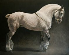 "Jaime Corum Equine Art ""The Lion and the Lamb"" oil on canvas, x Horse Drawings, Animal Drawings, Pretty Horses, Beautiful Horses, Horse Illustration, Horse Artwork, Horse Silhouette, Draft Horses, Equine Art"