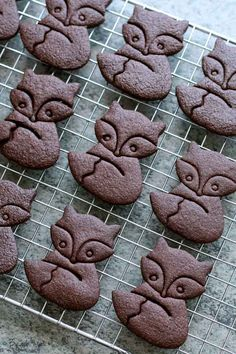 Cocoa, Desserts With Biscuits, Gingerbread Cookies, Just Cakes, Biscuit Cookies, Paleo Dessert, Christmas Desserts, Chocolate, Sweet Tooth