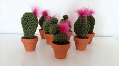 Fée du tricot: Mini cactus au crochet  *tuto inside*