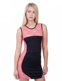 Womens Fashion Drop Shipper Lace with Mesh Insert Bodycon