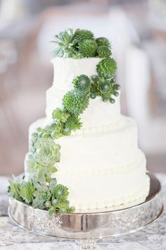 succulent-topped wedding cake, photo by Simply Bloom http://ruffledblog.com/romantic-alabama-wedding #weddingcake #cakes #succulents