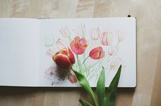 flowers, tulips, and art image