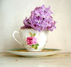 with lilac flower ...