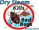Dust mites live in virtually everyone's bedding, triggering allergic reactions and asthma.  Steam can Kill DUST MITES Naturally. This site tells you how to kill dust mites in your mattress and carpet using a vapor steam cleaner.