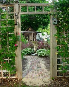 walkway and old weathered wooden trellis