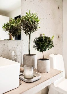 Modern concrete bathroom accessories