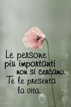 citazioni italiane Italian Life, Italian Quotes, Quotes About Everything, Self Help, Sentences, Life Lessons, Decir No, Positive Quotes, Love Quotes