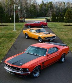 Mustang Boss 429 and 351 Ford Mustang 1969, Mustang Boss 302, Mustang Fastback, Mustang Cars, Classic Mustang, Ford Classic Cars, Ford Capri, Us Cars, Sport Cars