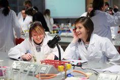 Biology assignment help Provider UK