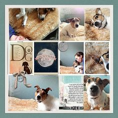 pet scrapbooking page.  This one is just great, so cute...simple layout shows off photos! Just adorable